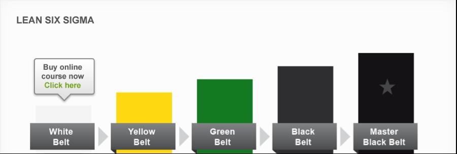 Lean Six Sigma Principle and Black Belt Certification