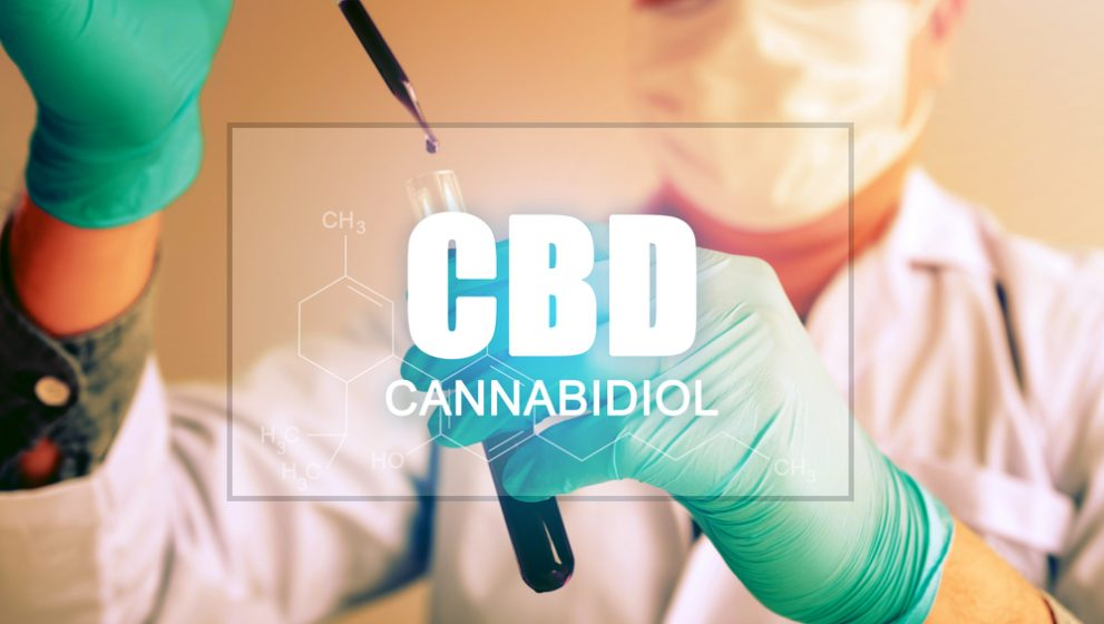 How Does CBD Work With Your Body?